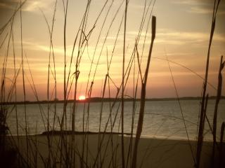 Cozy Beachfront Condo - Tybee Island vacation rentals