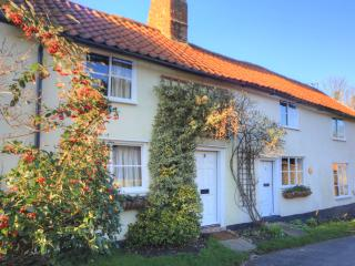 3 Bedroom 18C Character Cottage 20 mins-Cambridge - Fowlmere vacation rentals