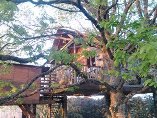 Gite cabane perchée 5p près Chateaux de la Loire - Saunay vacation rentals
