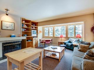 Cozy home at the base of Bald Mountain. Walk to the slopes! - Ketchum vacation rentals