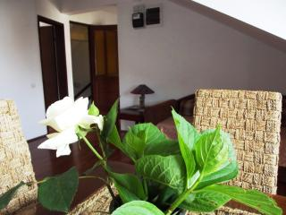 Lovely apartment in Centre of Budva - Budva vacation rentals