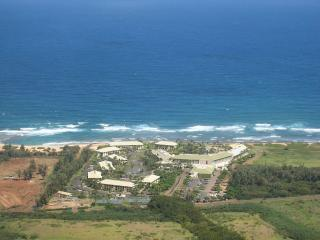 1 bedroom Apartment with Internet Access in Lihue - Lihue vacation rentals