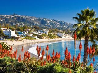 Contemporary Newport Ocean View - Newport Beach vacation rentals