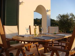 Anemos Villa-enjoy a relaxing and rural experience - Rethymnon vacation rentals
