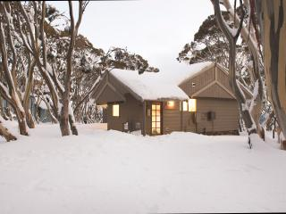 Dargo Chalet - Mount Hotham (Large Room) - Hotham Heights vacation rentals