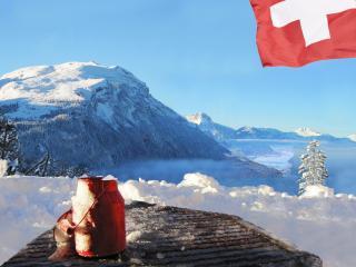 Panoramablick - Schwyz vacation rentals
