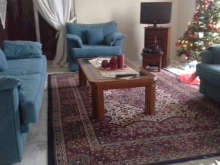 BIG HOUSE   95 (sq ,m)   17,7 min from  METEORA. - Trikala vacation rentals