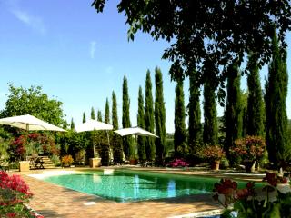 TENUTA SOSPESA with pool 2/4/6/8/10/12 people - Monte Petriolo vacation rentals