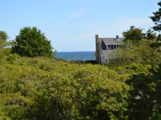 4 Min walk Nauset Beach, Ocean View - Orleans vacation rentals