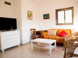 2Br BUGRASHOV St. HOMEY Apt !! - Tel Aviv vacation rentals