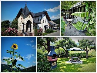 Apartment house Zotlar Bohinj with garden - Bohinjska Bistrica vacation rentals