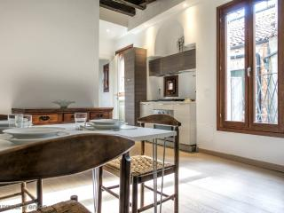 Campo de le gate modern flat to visit the Biennale - Venice vacation rentals