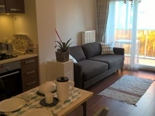 Romantic 1 bedroom Condo in Izmir - Izmir vacation rentals