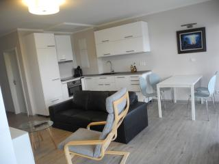 Moderne seniorengerechte Wohnung direkt am Strand - Schonberger Strand vacation rentals