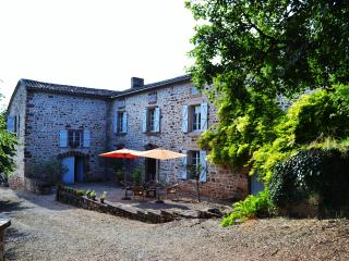 Large, isolated stone farm house, pool and views - Castelnau-de-Montmiral vacation rentals
