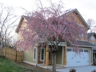 WEST ASHEVILLE GEM -- Great Location & Features!! - Asheville vacation rentals