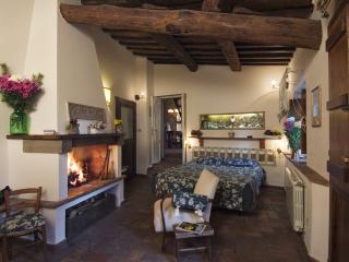 Castello Proceno - Apartment Bicocca - Proceno vacation rentals