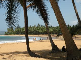 Luquillo Hidden Oasis—Your Paradise in Puerto Rico - Luquillo vacation rentals