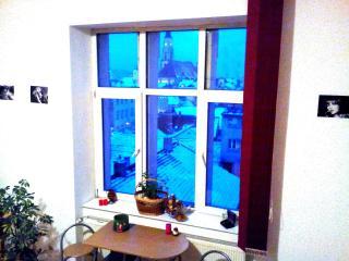 Bright 1 bedroom Apartment in Cluj-Napoca - Cluj-Napoca vacation rentals