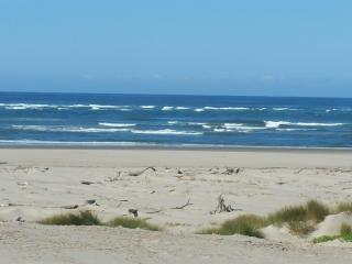 Oceania Beach Cottage - Waldport vacation rentals