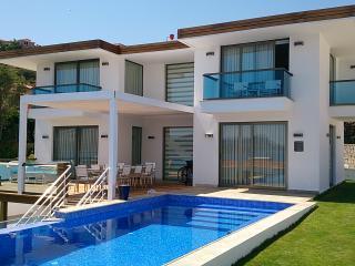 Luxury 4 Bedroom Sea Front Villa ( Villa İpsili ) - Kas vacation rentals