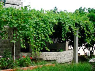 Casa di Oliveto apartment 1/3 nr.1 - Petrovac vacation rentals