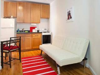 Beautiful Studio in the Heart of Upper East Side - New York City vacation rentals