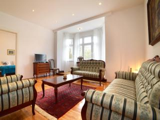 2 BEDROOM/110 m² APT IN VERY CENTER - Zagreb vacation rentals