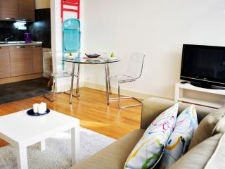 Beautiful apartment in city center! - Prague vacation rentals