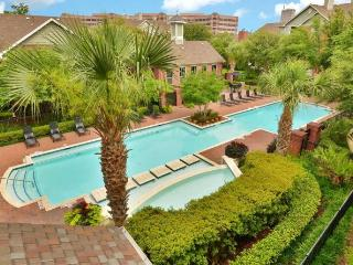 Texas Medical Center BIG 2BR 2BT - Houston vacation rentals