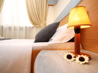 Alia Accommodation Bucharest - Bucharest vacation rentals