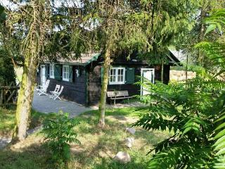 Nice House with Deck and Internet Access - Wolin vacation rentals