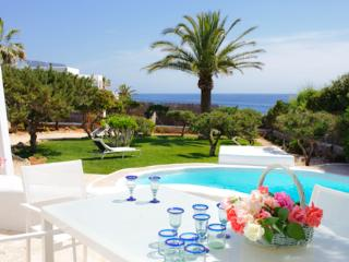 Comfortable Villa with Internet Access and Private Outdoor Pool - Cala d'Or vacation rentals