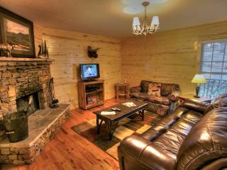 1 bedroom Cabin with Deck in Helen - Helen vacation rentals