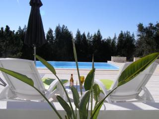 Holiday apartment shared pool Caldas da Rainha - Salir de Matos vacation rentals