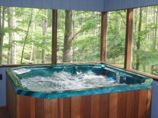 POCONO MOUNTAIN VACATIONS - 354 - Lake Ariel vacation rentals