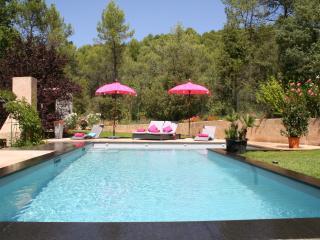 GITE dans BASTIDE PROVENCALE 4 étoiles - Varages vacation rentals