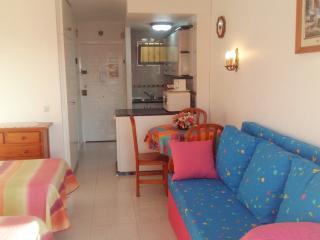 Minerva Studio apartment - Benalmadena vacation rentals