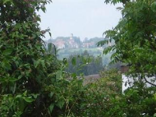 Nice Condo with Dishwasher and Iron - Überlingen vacation rentals
