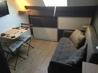 Charming studio in Montmartre near Sacré Coeur - Paris vacation rentals