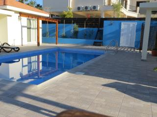 Self Catering Exclusive Villa sleeps 6 - Psematismenos vacation rentals