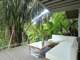 Beautiful designer home, steps from the beach - Santa Teresa vacation rentals