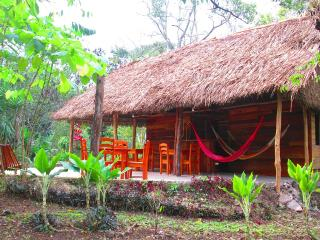 Eco Rainforest Lodge in Cayo on the Belize River - Belmopan vacation rentals