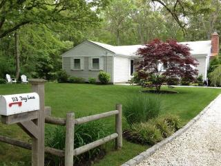 Perfect House with Deck and Internet Access - Centerville vacation rentals