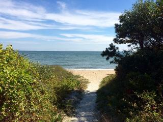 Perfect House with Deck and Internet Access - Mashpee vacation rentals