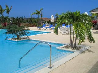 Fern Court Apartment @ Richmond with Oceanic view - Ocho Rios vacation rentals
