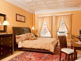 Deluxe studio w/ kitchenette and private bath - New York City vacation rentals