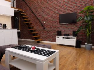 Bright 3 bedroom Krakow Condo with Television - Krakow vacation rentals
