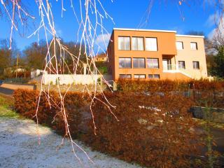 Luxus Villa mit Panoramablick, Sauna und Whirlpool - Bollendorf vacation rentals