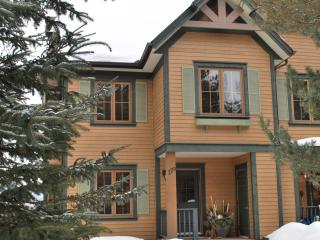 Absolutely Beautiful Chalet!  Skiing in March! - Mont Tremblant vacation rentals